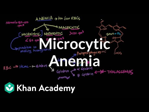 Microcytic anemia   Hematologic System Diseases   NCLEX-RN   Khan Academy