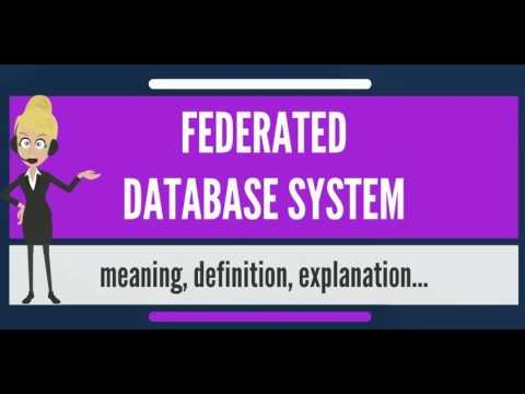 What is FEDERATED DATABASE SYSTEM? What does FEDERATED DATABASE SYSTEM mean?