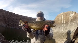 Eastern Sierra winter fishing Closing out 2019 Owens River snd Pleasant valley reservoir