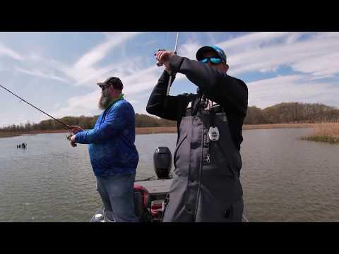 Potomac River Bass