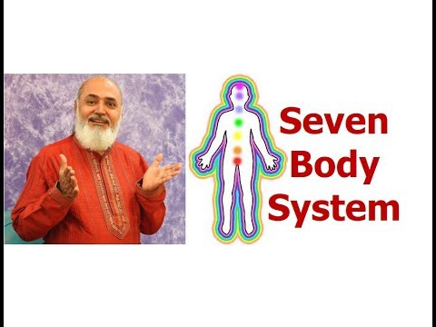 Seven Body system   Multidimensional Human Being