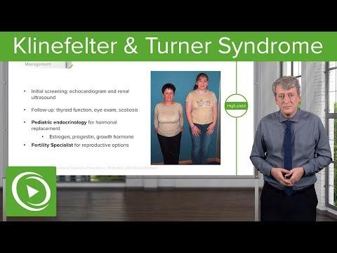 Klinefelter (XXY) & Turner Syndrome (Gonadal Dysgenesis) – Pediatric Genetics | Lecturio