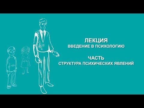 Ольга Ильина: Структура психических явлений | Вилла Папирусов