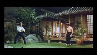 Kung-Fu: Bruce Lee vs. Robert Baker