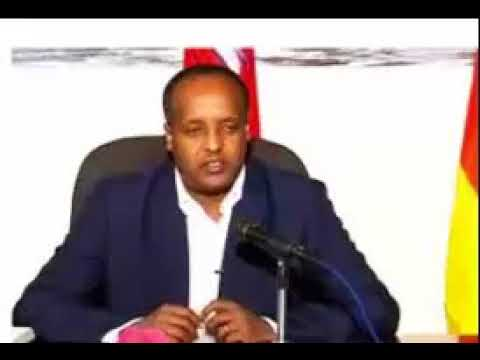 Ethiopia: His Excellency Ato Alemenew Mekonen head of ANDM office at Hedasse le Ethiopia Paltalk..