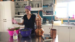 Distilling Coriander in a Coṗper Alembic
