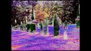 """Death By Misadventure"" - John Hiatt"