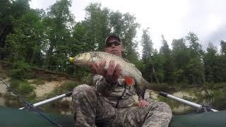 Поймал все виды хищных рыб на ультралайт спиннинг