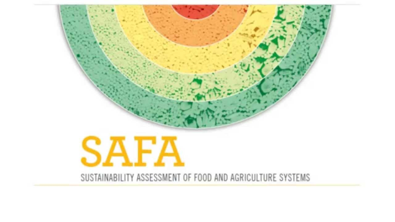 sustainability and food The global food system is dysfunctional both from a health and sustainability perspective it is time that science, policy and business.