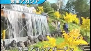 日本長野縣白樺湖池之平飯店