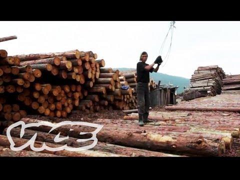 North Korean Labor Camps - VICE NEWS - Part 5 of 7