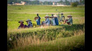 Bonjour Vietnam - Pham Quynh Anh.flv