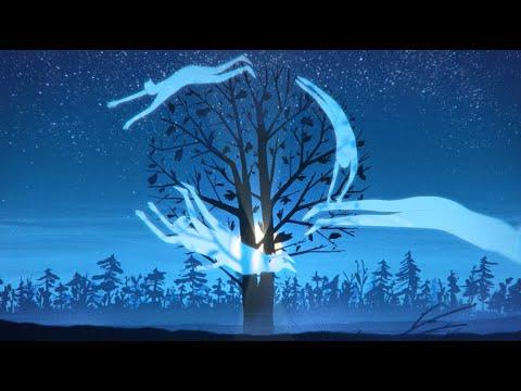 Jon Hopkins - Wintergreen (Official Video)