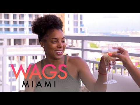 "Which ""WAGS Miami"" Star Slept With Darnell Nicole's Man? 