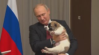 Vladimir Putin Melts Over Puppy He Received for His Birthday