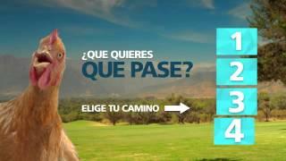Ruta del Maipo regala una parcela + caballo. ¿Qué quieres que pase?
