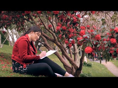 Student life at Victoria University of Wellington – an undergraduate perspective