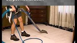 Carpet Cleaning Service in Loughman, FL