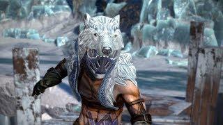 Path of Exile: Polar Helmet