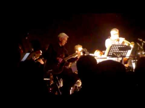 Linley Hamilton & The Camden Orchestra - Live In Belfast, May 2018