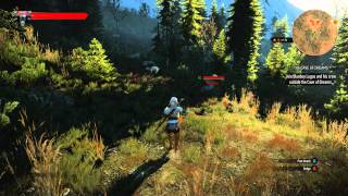 The Witcher 3 Gameplay: 4K Downscale Max Settings GTX 980 SweetFx