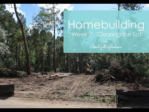 Homebuilding Week 2 - Still clearing the lot