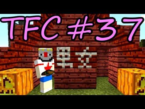 【Minecraft】生きる。#37【TFC実況】