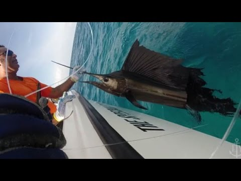 Extreme Fishing Seychelles African Banks Tour 2014