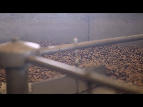 Making Amano Chocolate, Artisan Chocolate: GunVenture|S1 E10 P3