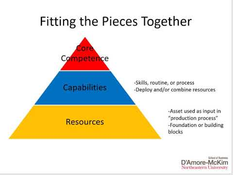 Analyzing the Firm 2  Resources and Capabilities
