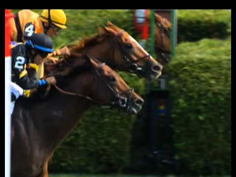 John Velazquez on Wise Dan