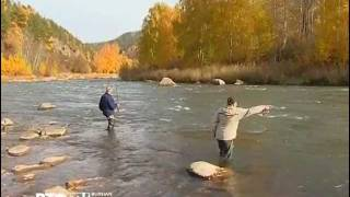 видео: Рыбалка на Алтае часть 2 www.teletskoye.ru