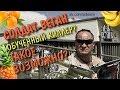 Веган солдат! АППОЛО - армейские будни самоанского солдата вегана