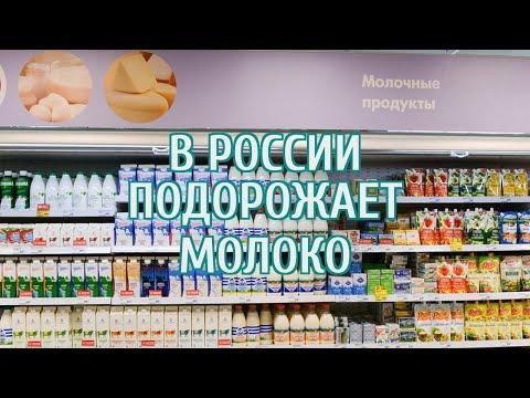 🔴 В России подорожает молочная продукция