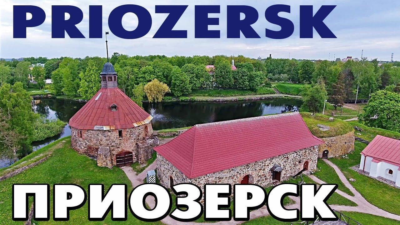 Прогнать сайт Приозерск информация о рекламах в интернете