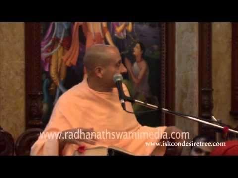 Funny incident with bees   Radhanath Swami