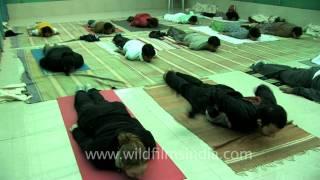 Yoga Session at Yoga Vidya Gurukul, Nasik