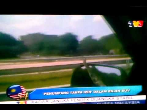 Snake On A Car via TV3 news