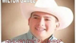 WILTON GAMEZ GUAYABO COÑO E LA MADRE