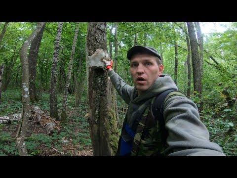 Ужас! Обнаружил ЕГО на дереве ! КОП И НАХОДКИ В ЛЕСУ