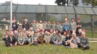 Happy Christmas 2013 from the Vietnam Bear Rescue Centre