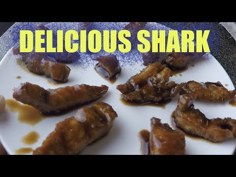 Predatory Fish Catch And Cook That Tastes Amazing, How To Cook Shark