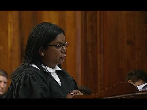 Advocate Andrea Johnson on behalf on the state OscarPistorius