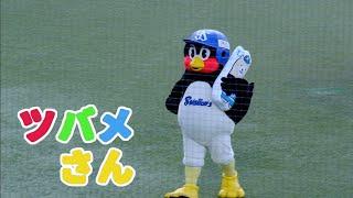 つば九郎 #サザエさん http://bit.ly/emifull2896 Thanks for subscribing to my channel!