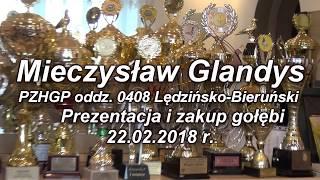 Mieczysław Glandys -(gołębie Grimme) PZHGP oddz. 0408 Bieruńsko-Lędziński 22.02.2018 - zakup gołębi