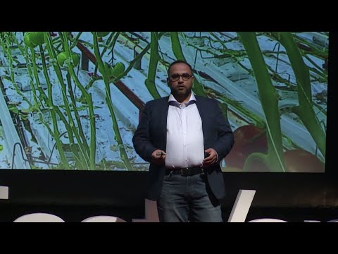 How AI + IA can help us grow clean food | Dr. Saber Miresmailli | TEDxEastVan