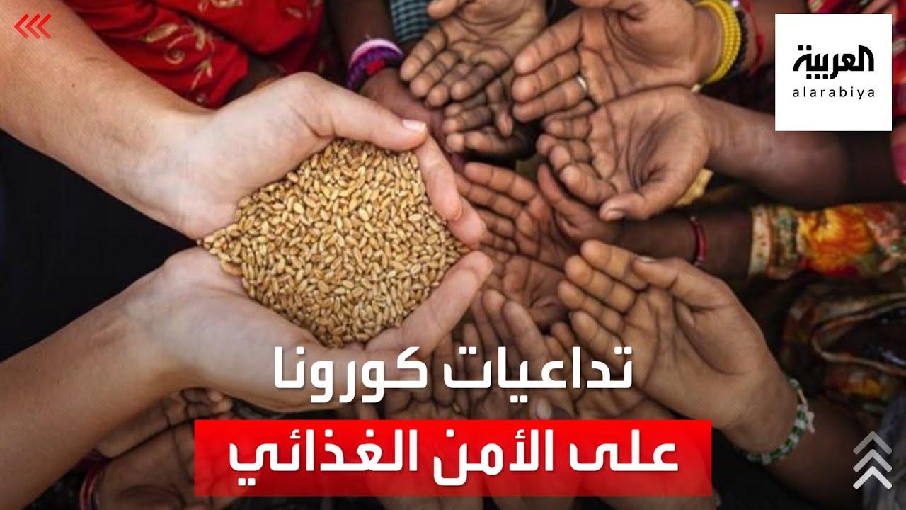 الاتحاد الإفريقي يبحث تداعيات كورونا على الأمن الغذائي  - نشر قبل 3 ساعة