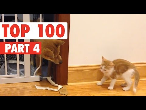 Top 100 Best of The Year 2016 Part 4