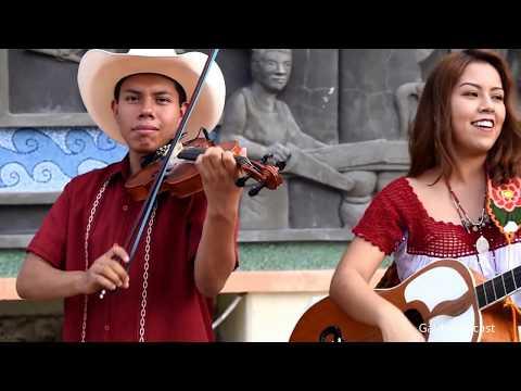 Trío Corazón de Cedro - La Vara De Mi Violín y La Petenera