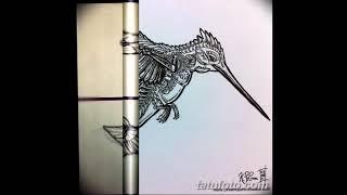 Эскизы тату колибри - коллекция интересных рисунков для татуировки